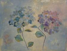 http://petra-cordis.de/files/gimgs/th-19_pcordis_2001_zwei_hortensienblüten.jpg